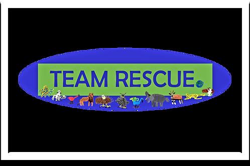 Team Rescue