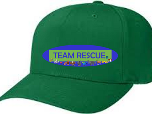 Team Rescue Green Cap