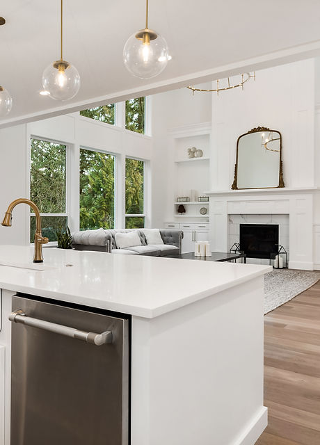 Kitchen and living room in new luxury ho