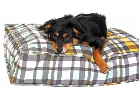 Northwestern Girl Dog Bed, comfy & soft plaid design, durable, washable, and pre-shrunk, molly mutt duvets are 100% cotton