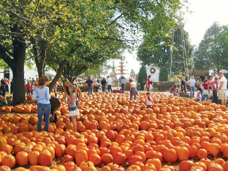 Joliet Pumpkin Patches 2021