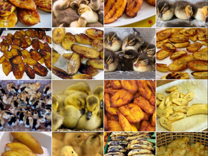 Animal or Food? The Internet's New Favorite Meme