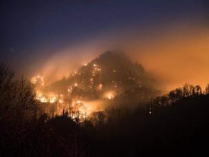 Dolly Parton's Response to the Gatlinburg Fires