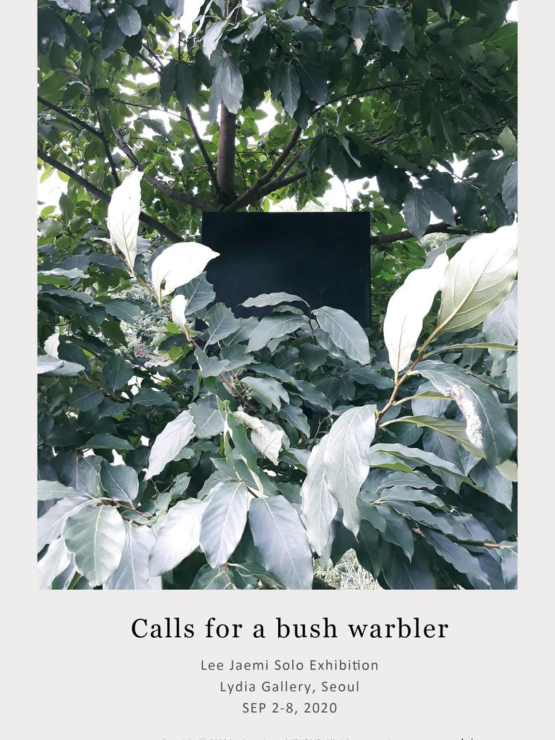 Calls for a bush warbler