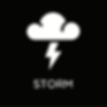 Storm-White-On-Black-w-Descriptor.PNG
