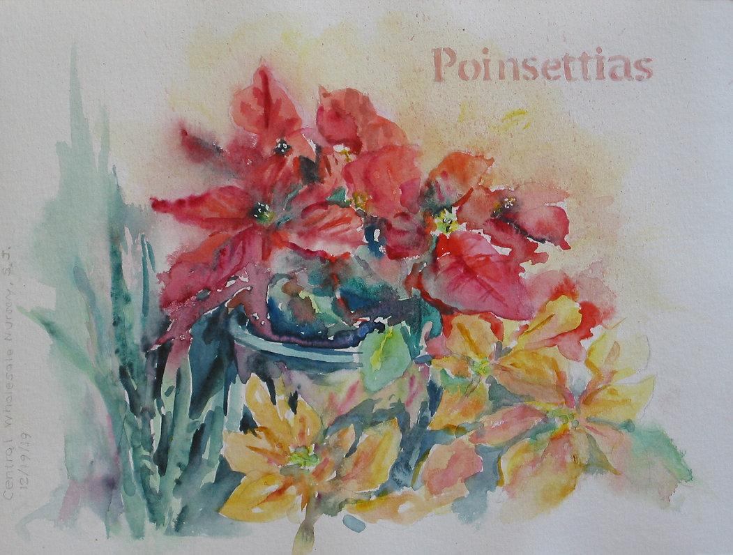 LaurieBarna_Poinsettias.JPG