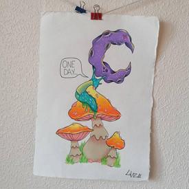 Slug on a mushroom