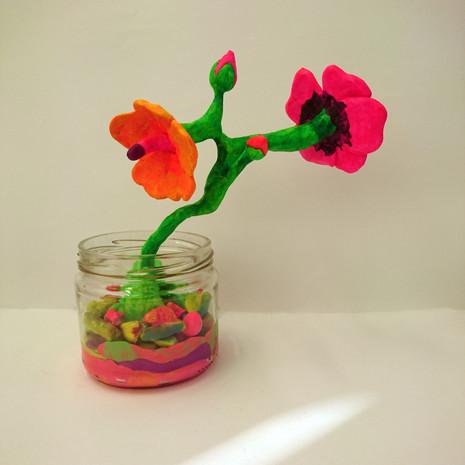 Rainforest in a Jar #3