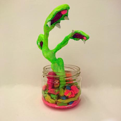 Rainforest in a Jar #1