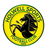 Holwell sports.png