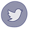 icons8-twitter-circled-96.png