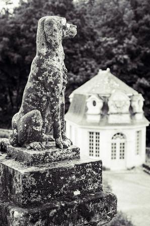 Travel-Photography-France.jpg