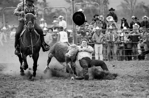 Rodeo_Bull_Hourse.jpg
