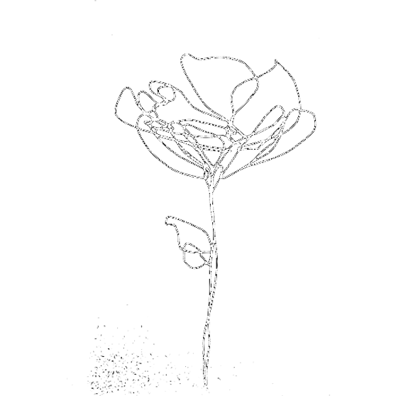 flower sketch png_edited.png