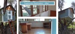 Treehouse Restoration - After
