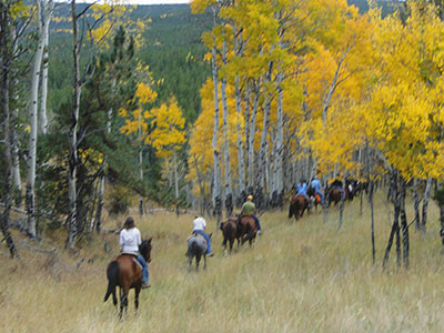 Horseback Riding in the Changing Aspens