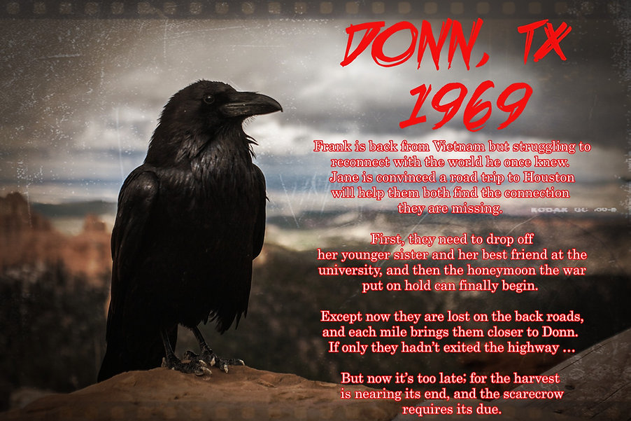 crow-828944_1920_edited.jpg