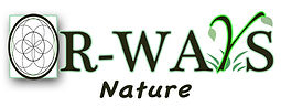 orways-logo-cropped_Nov18.jpg
