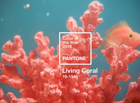 Pantone's Colour of the  Year 2019