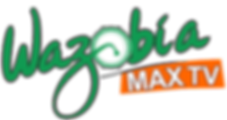 wazobiamax_Logo%20_edited.png
