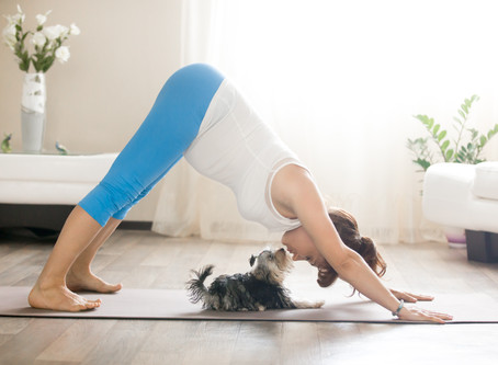 10 Keys to Getting Started With–And Sustaining–A Home Yoga Practice
