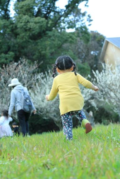春の野原へ