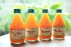 九州まるごとしぼり