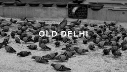 Experience Old Delhi in two days
