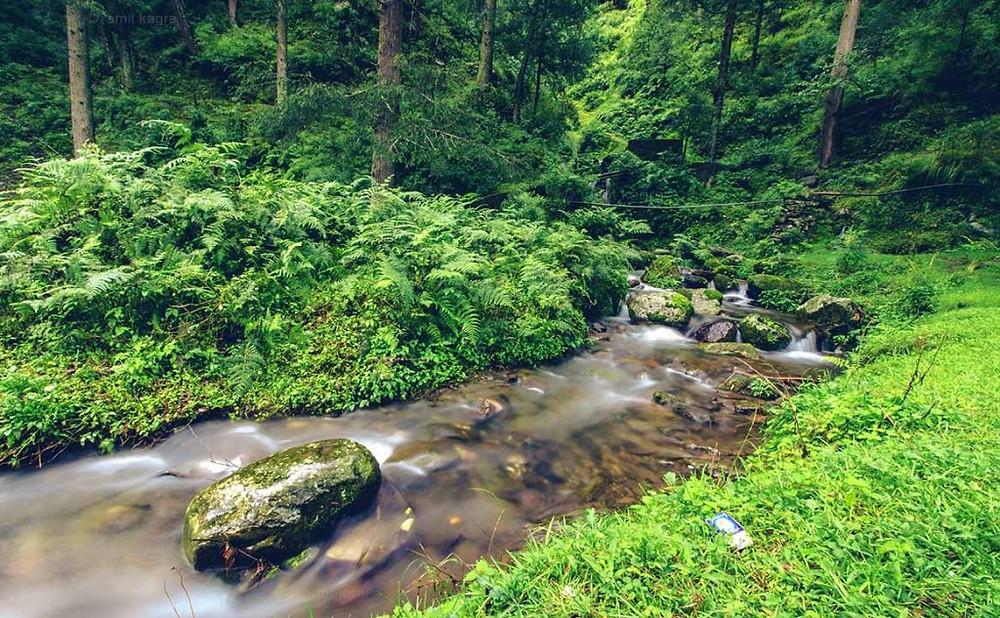 river stream in barot valley in himachal pradesh