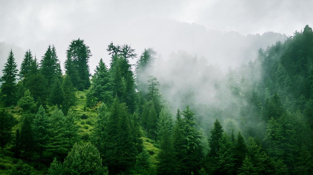 rain clouds in barot valley in himachal pradesh