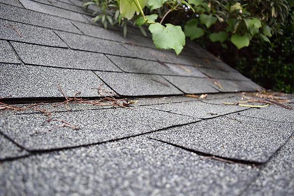 shingle-roof-leak-roofing-repair-assured