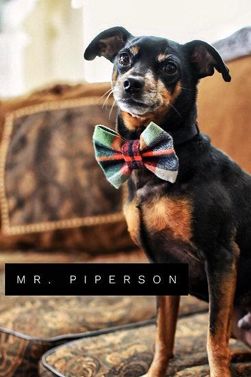 Mr. Piperson