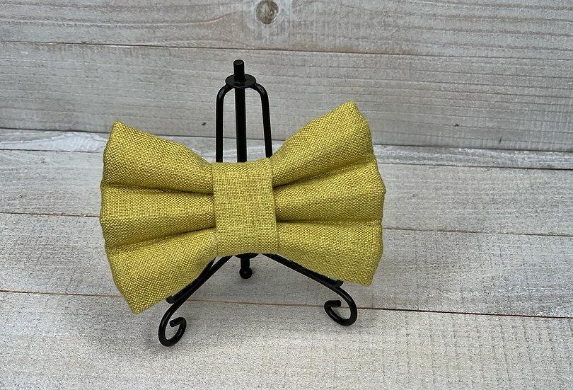 Hampton Avacado Bow Tie/Flower