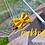 Thumbnail: Paddington