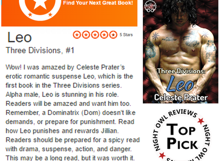 5 STAR RAVE REVIEW/RATING FOR THREE DIVISIONS: LEO!