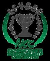 AFYSSC Logo.png