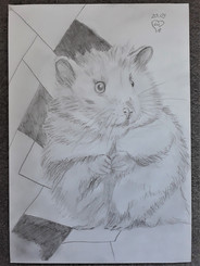 Hamster by Luna Smith