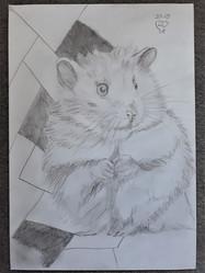 20.09.18 Sketch by Lu