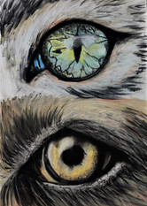 Dog and Cat Eyes by Luna Smith