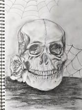 Skull by Luna Smith
