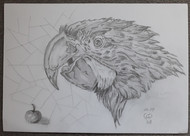 Parrot by Luna Smith