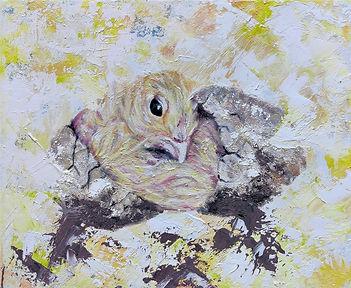 Hatching Cute Chick.jpg