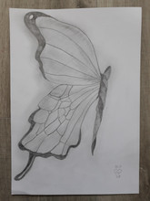 31.11.18 Sketch by Lu