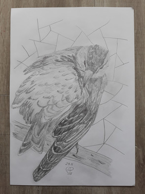 29.11.18 Sketch by Lu