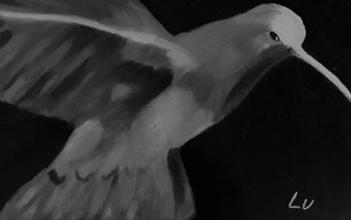 Hummingbird by Luna Smith