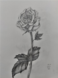 Rose by Luna Smith