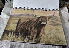 Scottish cow by Luna Smith.
