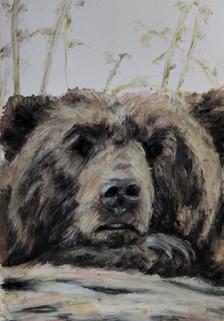 Viking pet- bear drawing by Luna Smith