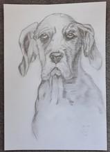 16.09.18 Sketch by Lu
