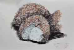 Snowballs by Luna Smith